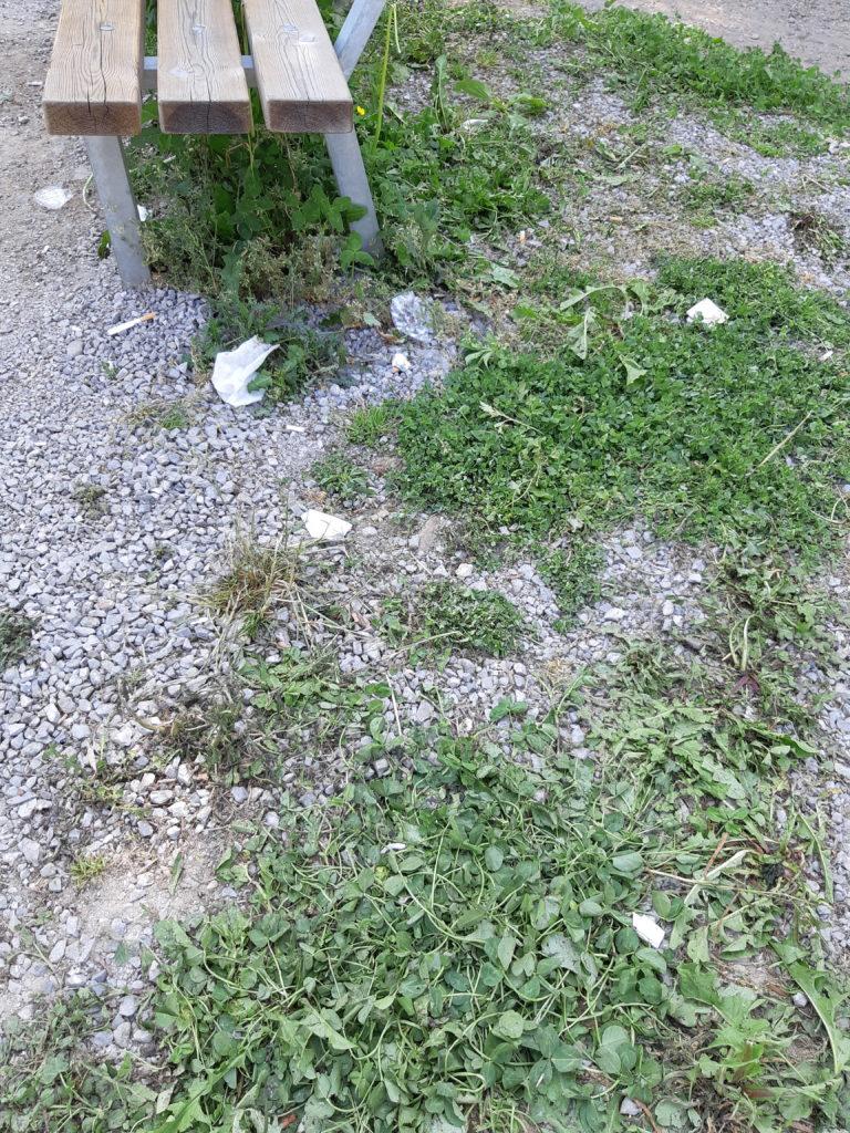 Foto con rifiuti per terra