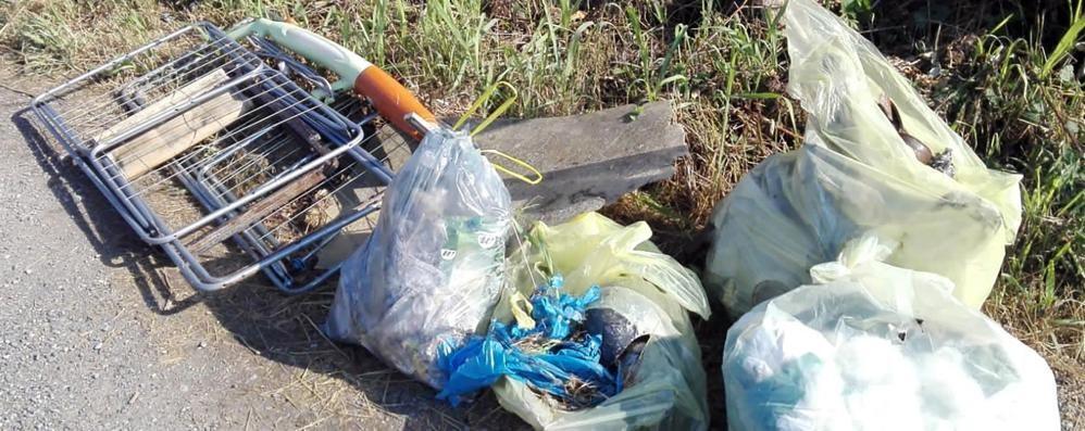 Invasione di rifiuti in Riserva